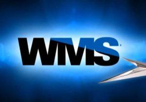 Обзор провайдера софта WMS Gaming для казино, слотов и игровых автоматов Укрказино
