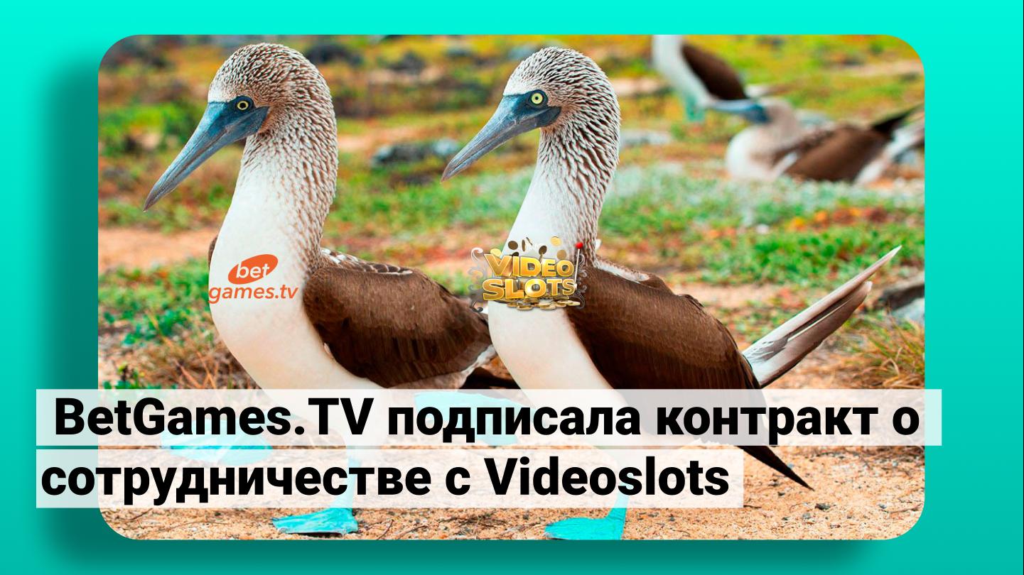Компания BetGamesTV подписала контракт о сотрудничестве с Videoslots